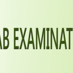 5th & 8th Class PEC Model Papers Download
