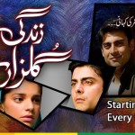 Hum Tv Drama Zindagi Gulzar Hai Review And Cast