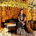 Sharmila Farooqi Pictures -4