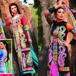 Sitara Sapna Lawn Collection 2013 by Sitara Textiles13