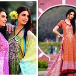 Sitara Sapna Lawn Collection 2013 by Sitara Textiles8