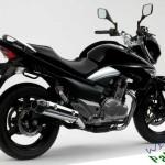 Suzuki Inazuma GW 250 Price in Pakistan