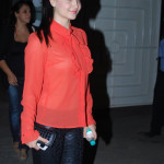 Elli Avram Wear The Hot Transparent Dress at City Lights Screening